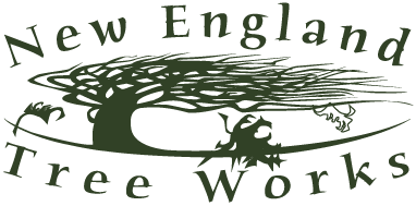 New England Tree Works